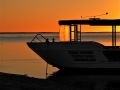 Novice - Bronze - Coral Bay - Nigel Palmer