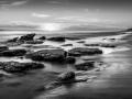 Open - Gold - Burns Beach Mossy Rocks - Michelle de Swardt