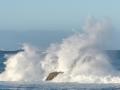Open-Silver-Richard Eaton-Wave Rock