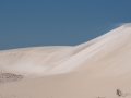 Novice_Bronze_David-Wilding_Lancelin-Sand-Dunes