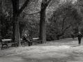 Open_Bronze_Rolando Custodio_A-walk-in-the-park